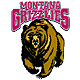 Grizzlies emblem