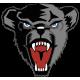 Black Bears emblem