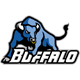 Bulls emblem