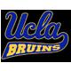Bruins emblem